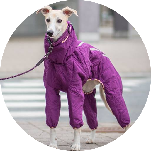 Hurtta Casual Quilted Overall Til Slanke Hunde