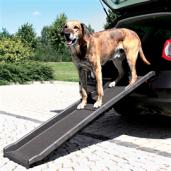 rampe_til_bil_hund